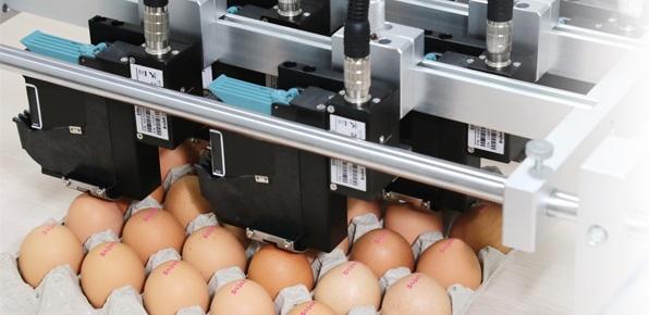 Impresoras de alta resolución, Elfin VI, JL PRO SERVICE
